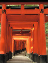 A passageway of Torii Gates Stock Photos