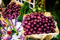Passion fruits in basket Stock Photography