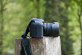 Passion for photography close up of a dslr camera sitting on some wood with a blurred background Royalty Free Stock Image