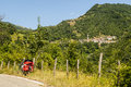 Passo del cirone tuscany emilia by bicycle parma italy forest and villages mountain landscape at summer a with red bags Royalty Free Stock Image
