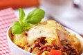 Pasta alla Bolognese Stock Photography