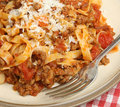 Pasta with bolognese sauce and parmesan cheese beef ragu shavings Stock Images