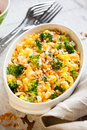 Pasta and broccoli casserole with cheese nut Stock Images