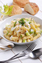 Pasta with gorgonzola cheese and fennel on the white table Royalty Free Stock Images