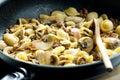 Pasta orecchiette Royalty Free Stock Photo