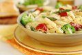 Pasta primavera vegetarian with fresh vegetables Stock Photography