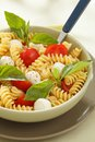 Pasta salad with cherry tomatoes and basil leaves mozzarella Royalty Free Stock Photography