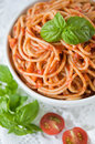 Pasta with tomato sauce and basil Royalty Free Stock Image