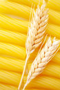 Pasta with wheat ears Royalty Free Stock Photos