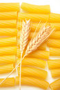 Pasta with wheat ears Royalty Free Stock Photo