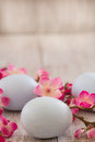 Pastel blue Easter eggs with Cherry blossom flowers