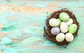 Pastel colored easter eggs in nest on wooden background