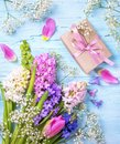 Pastel colored flower and a gift box Royalty Free Stock Photo