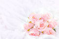 Pastel Coloured Artificial Pink Rose on white fur background Royalty Free Stock Photo