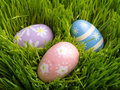 Pastel Easter Eggs in Fresh spring Grass Royalty Free Stock Image