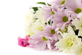 Pastel pinks pink and white chrysanthemum bouquet Stock Photo