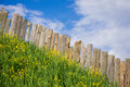 Pastoral views of the palisade from boards fence is a village full flowers rural life outside city landscape on bright Royalty Free Stock Photo