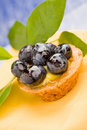 Pastries with blueberries Royalty Free Stock Photo