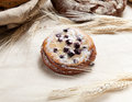 Pastry with berry and sugar powder Royalty Free Stock Images