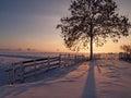 Pastvina v zime