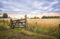 Patagonia chile farm gate and cornfield entry to a of ripe wheat in landscape of a golden summer day at sunset or sunrise an Royalty Free Stock Image