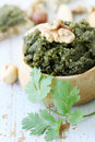 Pate nuts cilantro spicy of crushed and fresh coriander Stock Images