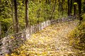 Path in autumn forest maple Royalty Free Stock Photos