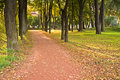 Path in autumn park Stock Photo
