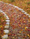 Path in autumn pathway covered with colorful dried leaves Royalty Free Stock Images