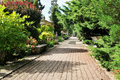 Path in a Beautiful Landscape Garden Stock Images