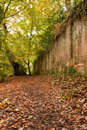 Path By the Boundary Wall Royalty Free Stock Images