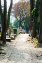 Path in a cemetery Stock Images