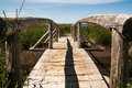 Path of destiny wooden bridge which traverses a small creek leading to the ocean shore Royalty Free Stock Photography