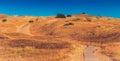 Path through dunes Royalty Free Stock Photo