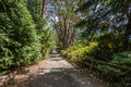 Path And Fence Royalty Free Stock Photo