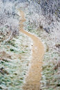 Path through the frozen countryside in december small Stock Image