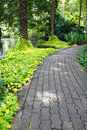 Path and garden Stock Image