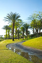 Path at golf course in california pga west la quinta Stock Photo