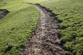 Path in grassland located xinjiang china Stock Photos
