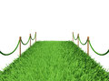 Path of green grass d rendering on white background Stock Images