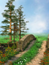 Path on a green meadow Royalty Free Stock Photos