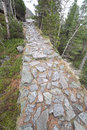 Cesta na Vysočine