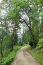 Path for hiking on a mountain slope sinyuha altai krai Royalty Free Stock Photography