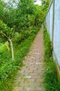 stock image of  A path made by eat outside a wall