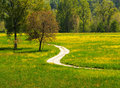 Path in the meadows Royalty Free Stock Photo
