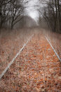 Path of melancholia abandoned railroad track through a dark autumn forest Royalty Free Stock Photos