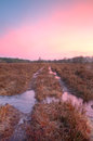 Path through moor pink and purple sky at sunrise above a with puddles a Stock Photos
