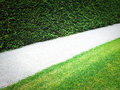 Path near green hedge between and grass lawn Stock Image