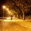 Path at night Royalty Free Stock Photos