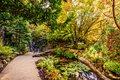 path in a park between a pond and a waterfall near a stone wall, surrounded by the trees Royalty Free Stock Photo